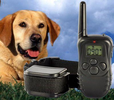 Електронен нашийник за дресура на кучета